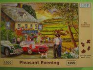 Pleasant Evening (114)