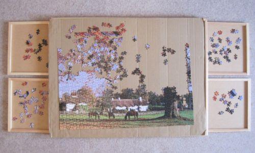 Puzzle Organiser (1198)
