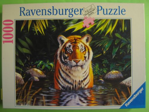 Tiger Pool (129)
