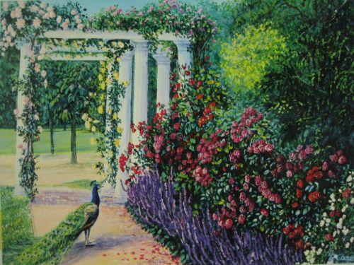 Peacock Garden (135)