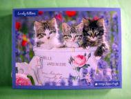 Lovely Kittens (1381)