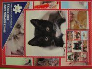 Cute Kittens (216)