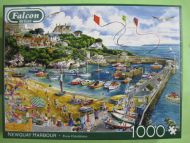 Newquay Harbour (2496)