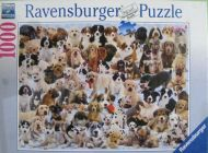 Dogs Galore! (2616)