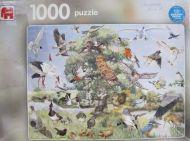 Bird Collage (2645)