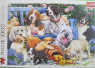 Dogs in the Garden (3014)