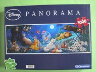 Panorama (492)