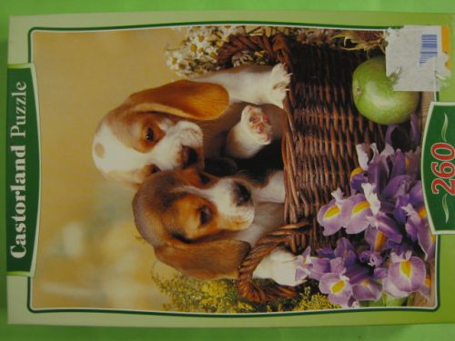 Puppies in the basket (593)