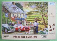 Pleasant Evening (966)