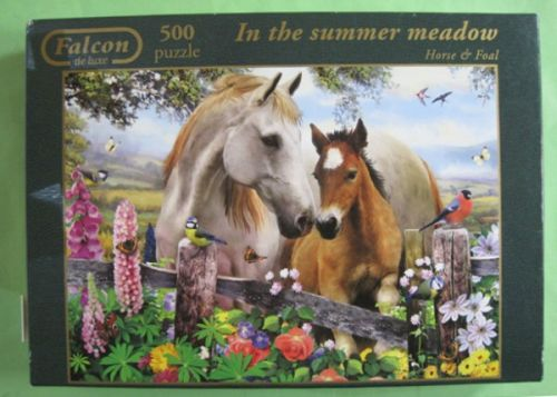 In the summer  meadow (976)